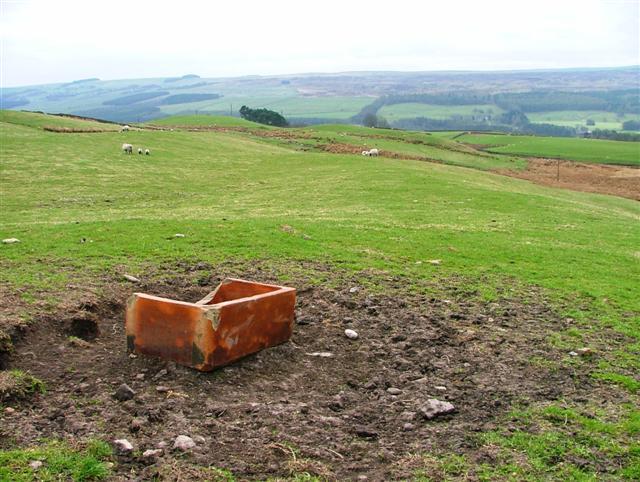 Pasture Near Hollincrag