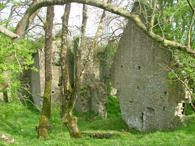 Ruins of East Orchard Castle