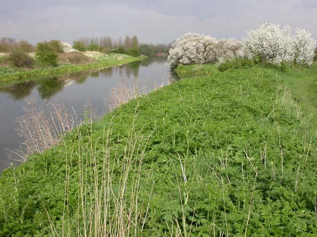 Nene River