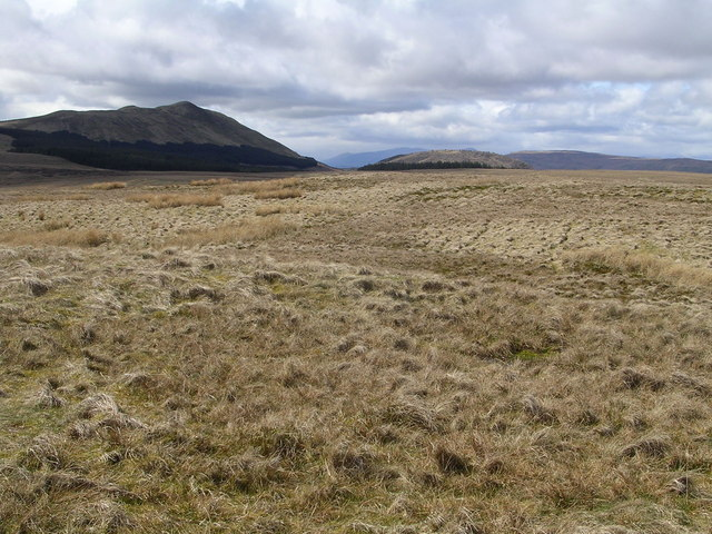 Summit of Laird's Hill