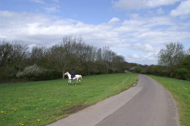 Horse Boy on Breach Hill
