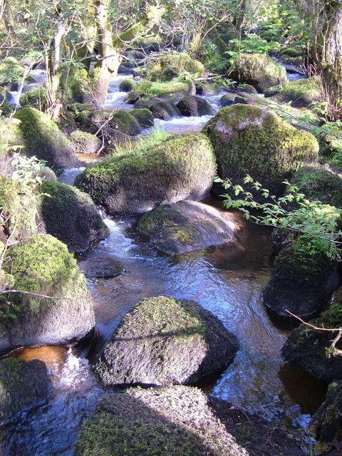 River Bovey above Horsham Steps