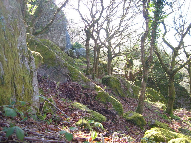 Rocks on Lustleigh Cleave