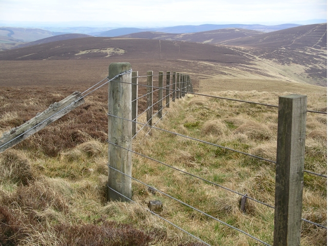 Fence corner, Redscar Law