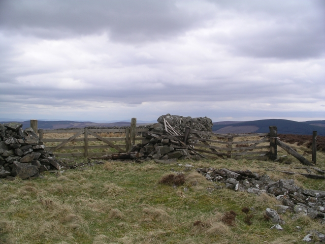 Gates and walls, summit, Stony Knowe