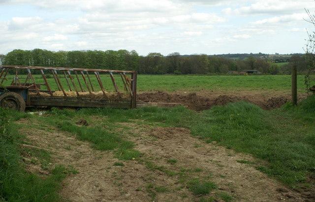 Field SE of Yew Tree Farm
