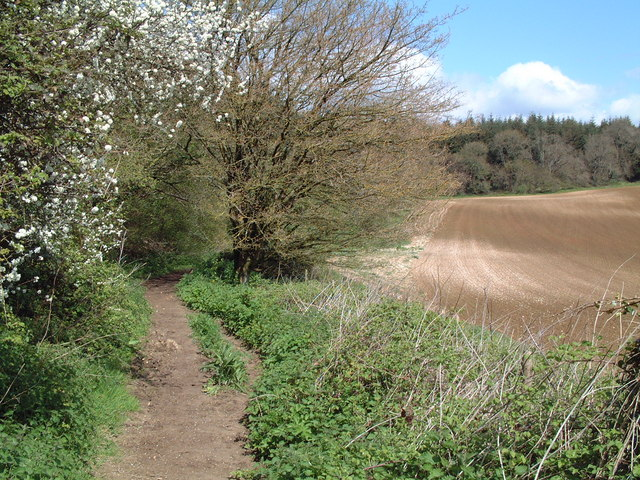 Bladen Woodland