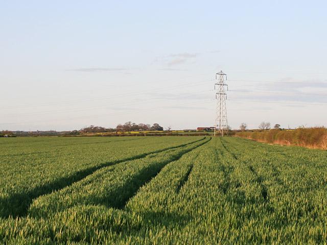 Farmland near Plungar