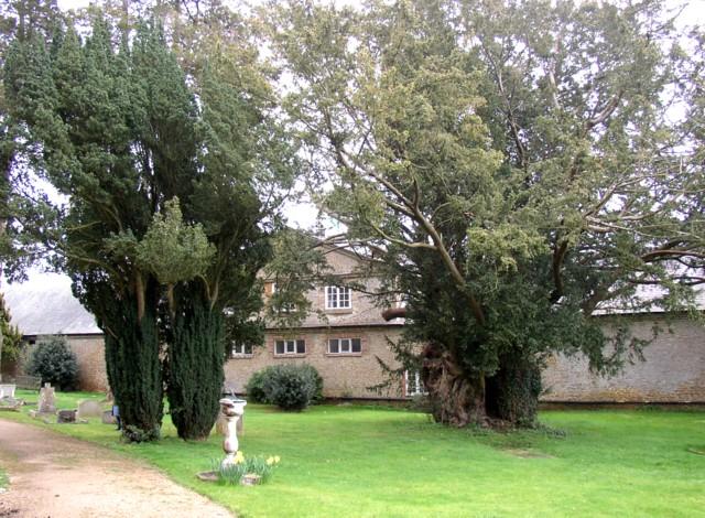 Churchyard, St Nicholas's Church, Peper Harow