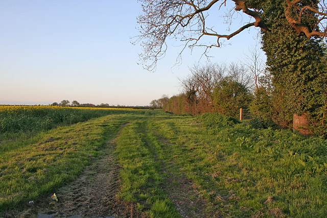 Farm track near Granby, Nottinghamshire