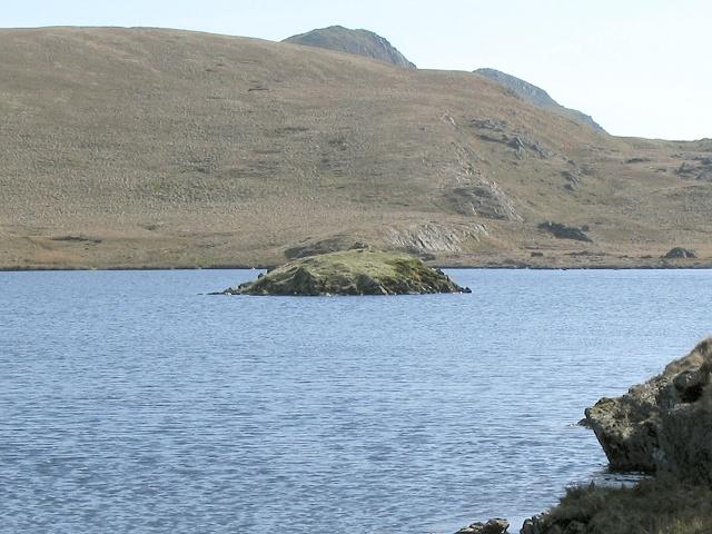 Island in Llyn yr Adar