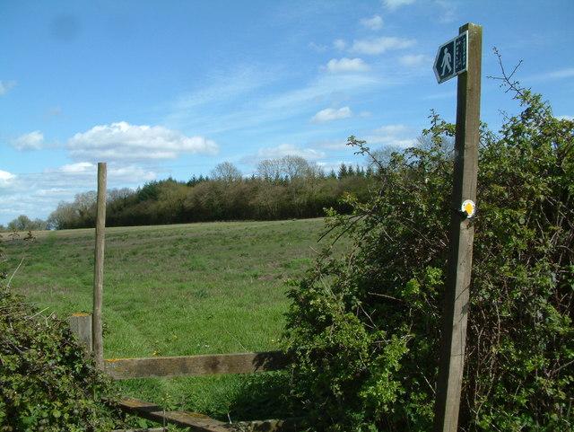 Footpath, Biddlesgate Farm