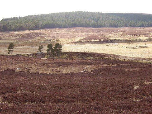 Flood plain - Bannock Burn