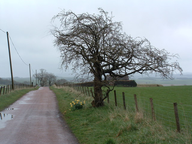The road towards Spittal