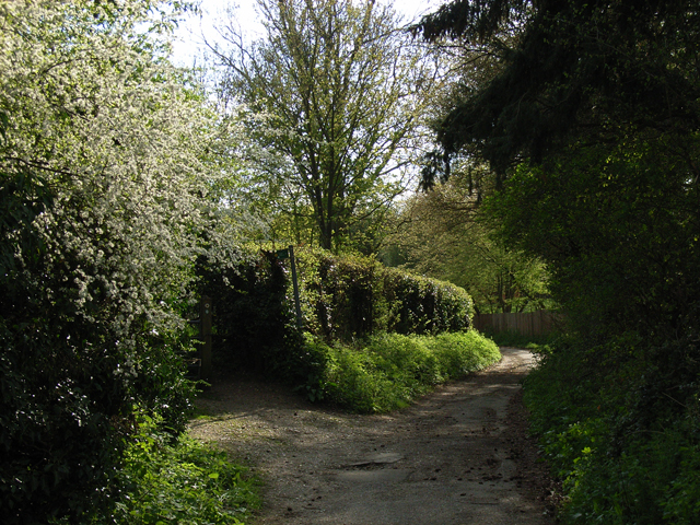 Branch Lane, Hedsor