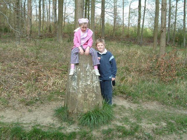 Triangulation pillar, Great Widmoor Wood
