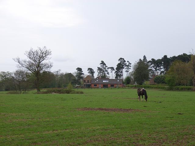 Rickman's Hill