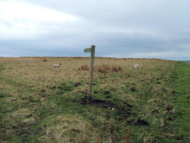Bridleway to Hopefoot