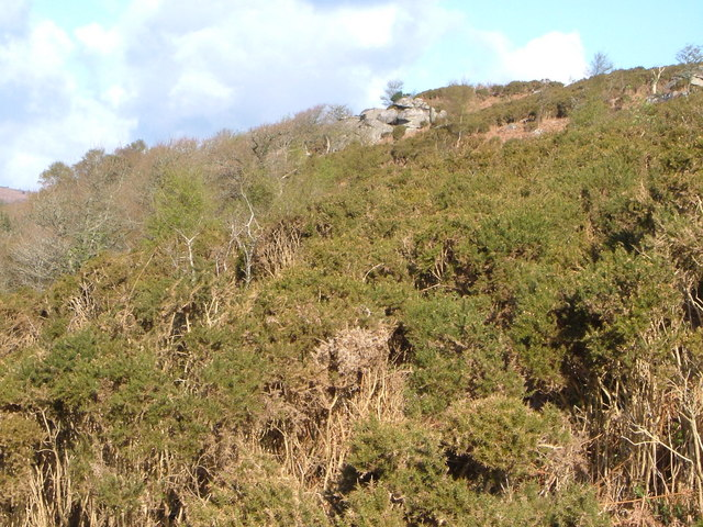 Slope on Lustleigh Cleave