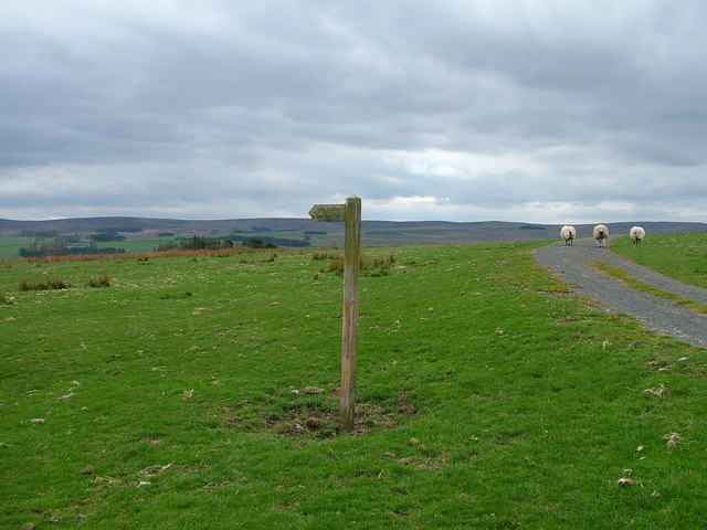 Bridleway to Otterburn