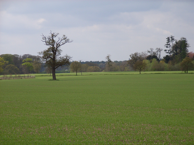 Farmland near Beaconsfield