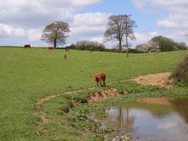 Pastures near Hedgerley