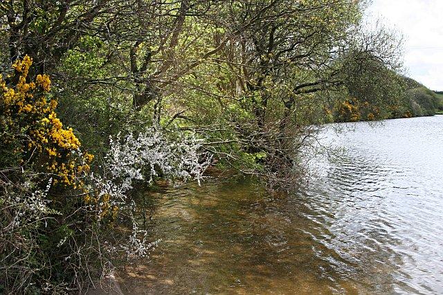 Lakeside, Argal Reservoir
