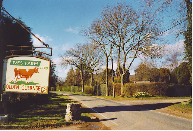 Ives Farm, Forest Green.