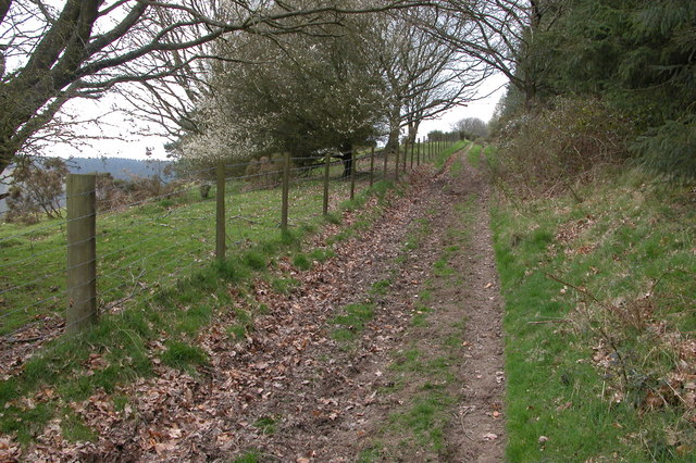 Track on southern edge of Sowdley Wood