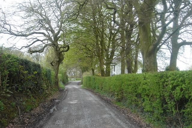 Ollerton Lane