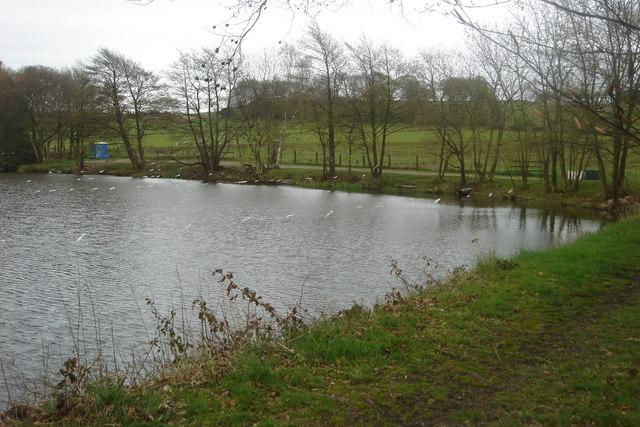 Reservoir down Oakmere Avenue