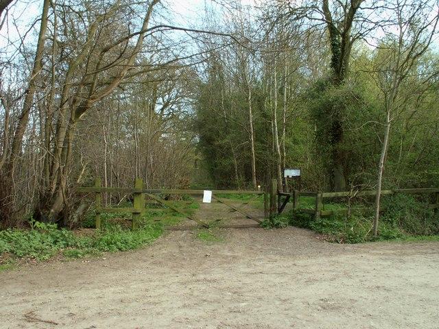 Garnett's Wood, Essex