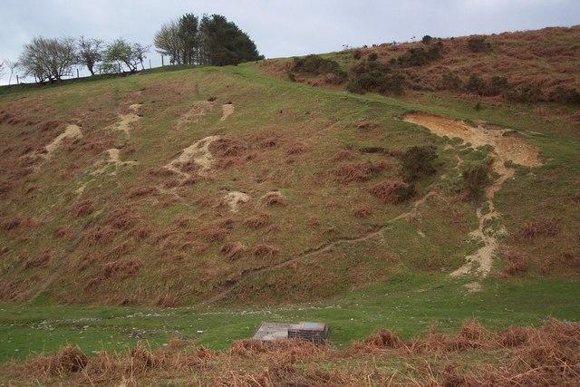 Spring well and rabbit warrens below Hergest Ridge