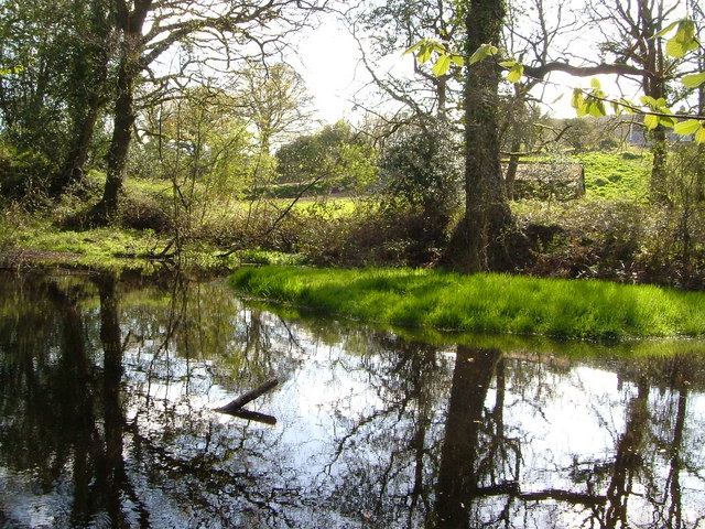Pond near Longland Barn