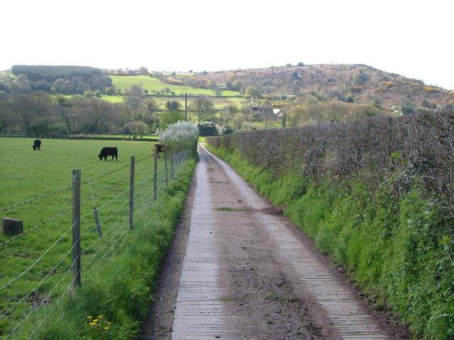 Road to Peck Farm