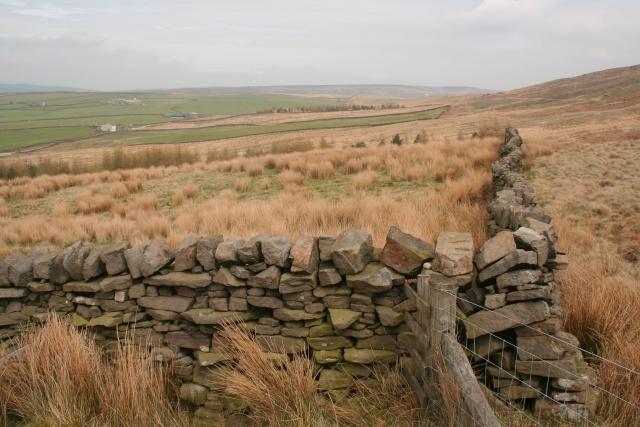 Wall, Bedding Hill Moor