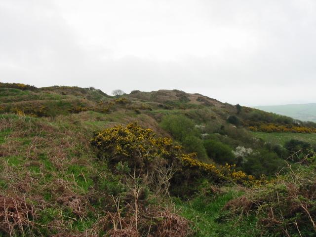 Hardown Hill, Morcombelake