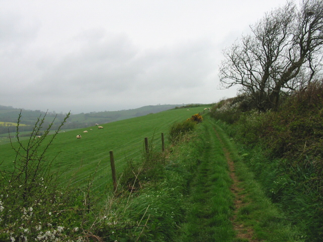 Green lane and farmland, north of Quarry Cross
