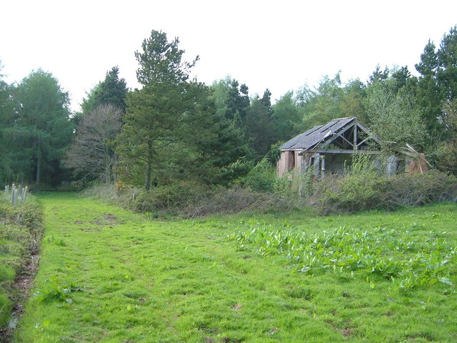 Derelict building in Rushmoor Wood