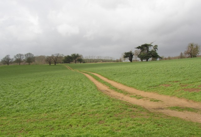 Field track, Peper Harow