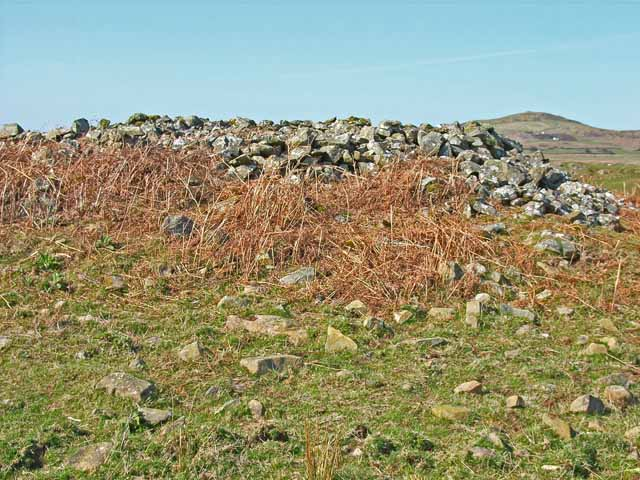 The White Cairn on the Wigtownshire Moors