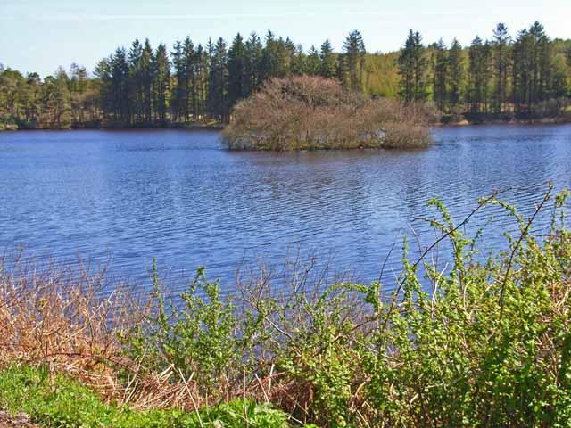 Crannog on Loch Heron