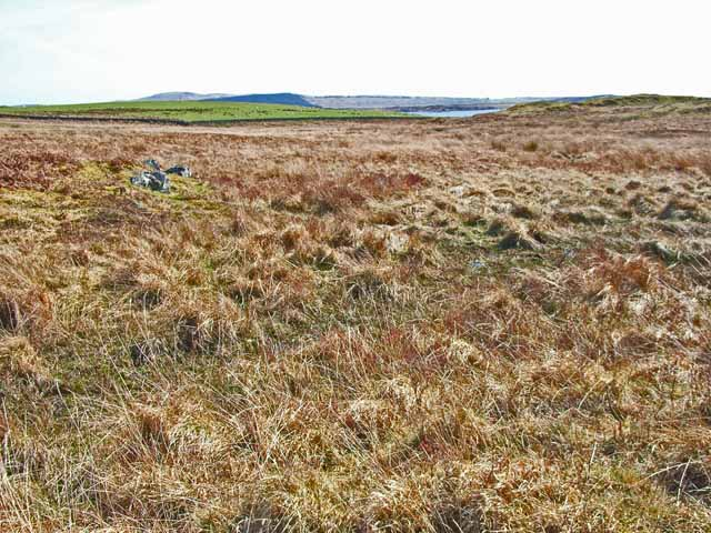 Challochglass Moor