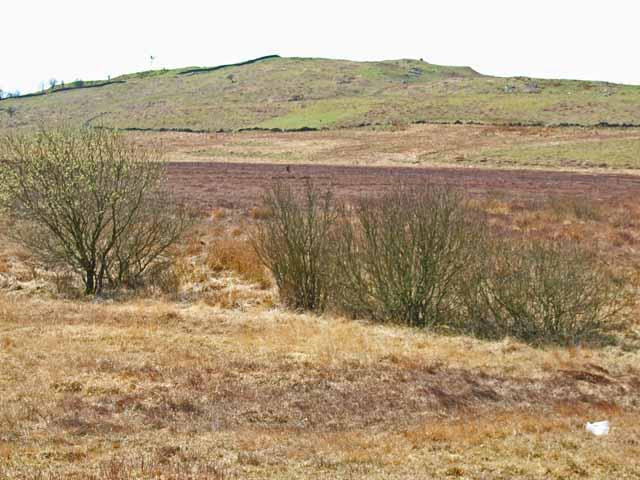 Moorland near Culvennan Fell
