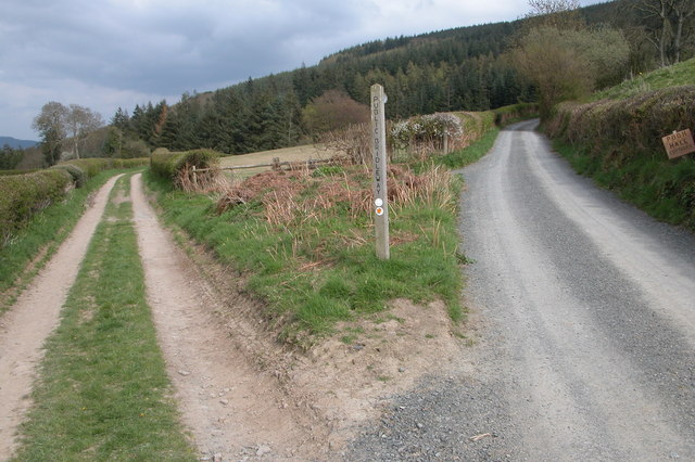 Bridleway to Sowdley Wood, near Clun
