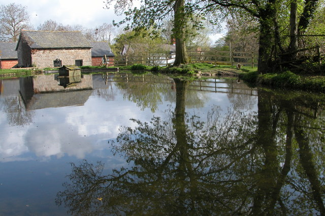 Mill Pond, Bacheldre Mill