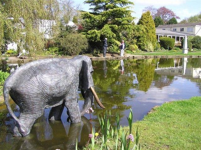 Stapeley Water Gardens
