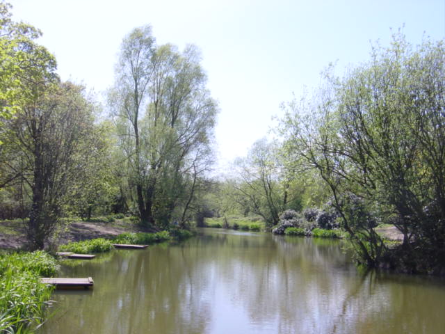 Spring at the Fishing Pond, Carr Lane, Prescot