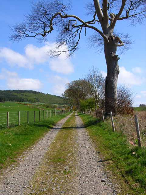 Farm road on the Castle Kennedy estate