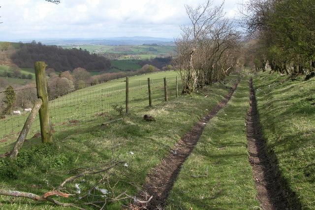 Bridleway leading to the Kerry Ridgeway